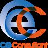 CE Consultant